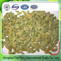 Best selling products organic green raisins