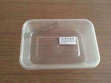 contenedor de molde de la caja