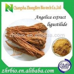 100% Natural GMP Certificate ligustilide 1% Angelica Root Extract
