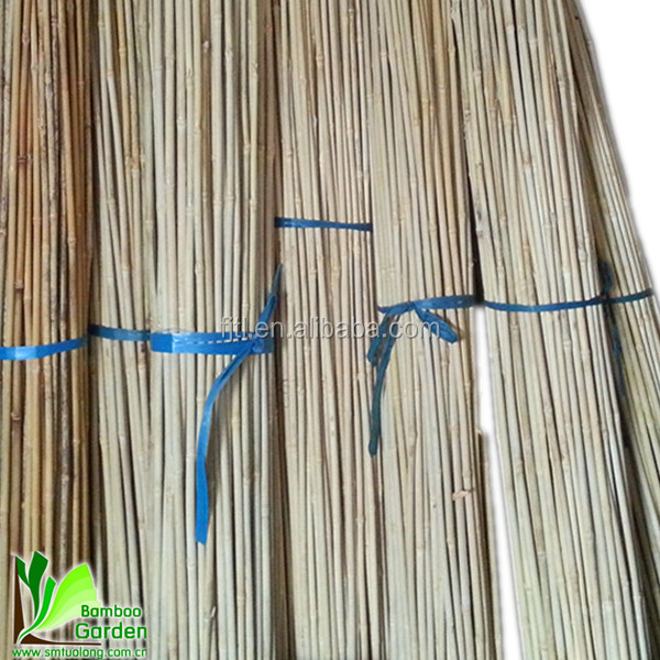 thin bamboo sticks buy thin bamboo sticks small bamboo