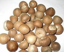 dried betel nut