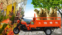 chinese popular new style 150cc 200cc air cooled petrol powered pedal cargo tricycle