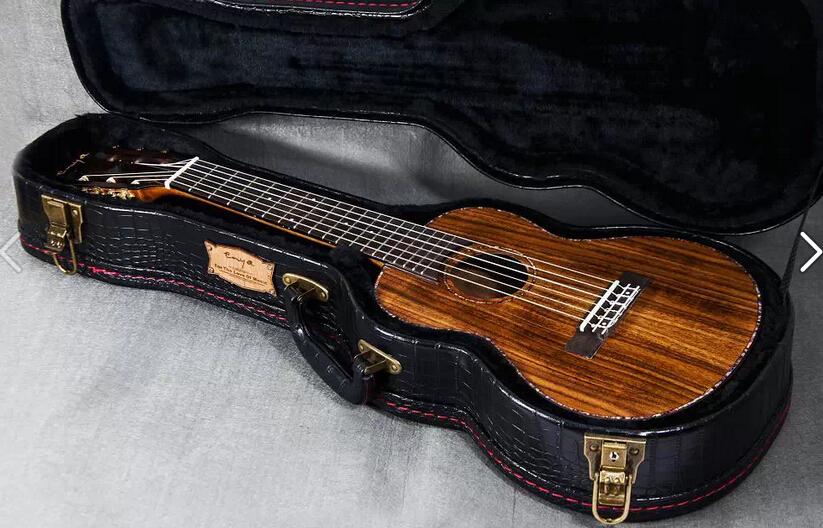 Жесткий чехол для гитары