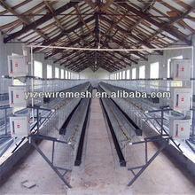 Chicken Wire For Bird Cage (manufacture)
