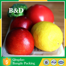 High quality plastic bliter fruit box /container/ fruit Tray/ Clear blister clamshell packaging for fruit with best price