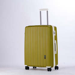 "24"" Hardside Luggage"