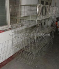 chicken cages used for egg chicken ,meat chicken and chicks for sale