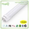 High brightness T8 led tube light 3 years Warranty Indoor Lighting T8 LED Tube Light 10W