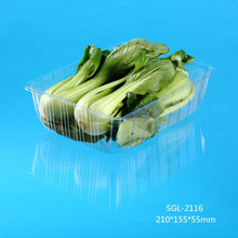 hot selling oblong transparent plastic vegetable trays wholesale