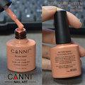 Vente en gros de produits ongles vernis à ongles gel #30917w canni couleur