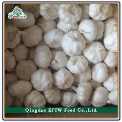 China Lowest Wholesale Garlic Price
