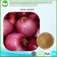 2015 Best selling Allium cepa extract / Onion Extract Quercetin