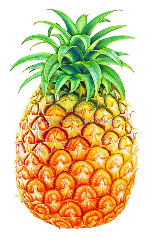 pineapple peeler machine