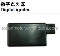 Digital_igniter.jpg