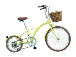 Specially Designed Ladies City Bike