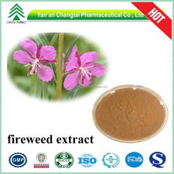 GMP Certificate high quality hot sale Epilobium angustifolium extract