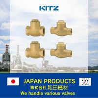 kitz check valve , bronze swing check , class 125 R