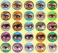 25 colores freshtone corea cosmética barato lentes de contacto de color venta al por mayor