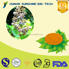 Made in China manufacturer 60% Sanguinarine Chelerythrine / Best Selling Bocconia Cordata Fruit Extract Powder