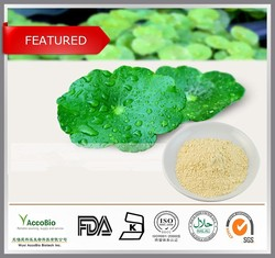 High Quality Hydrocotyle Asiatica Extract Total Triterpenes 40%- 95%