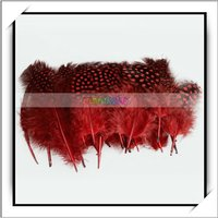 Cheap! 50pcs Genuine Red Chicken Feather