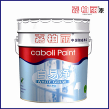 Caboli anti fungus washable interior anti-bacterial latex paint
