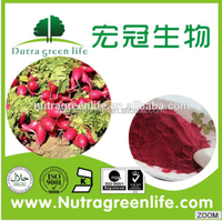 Red Beet Extract/ Red Beet Powder/ Red Beet Root Powder