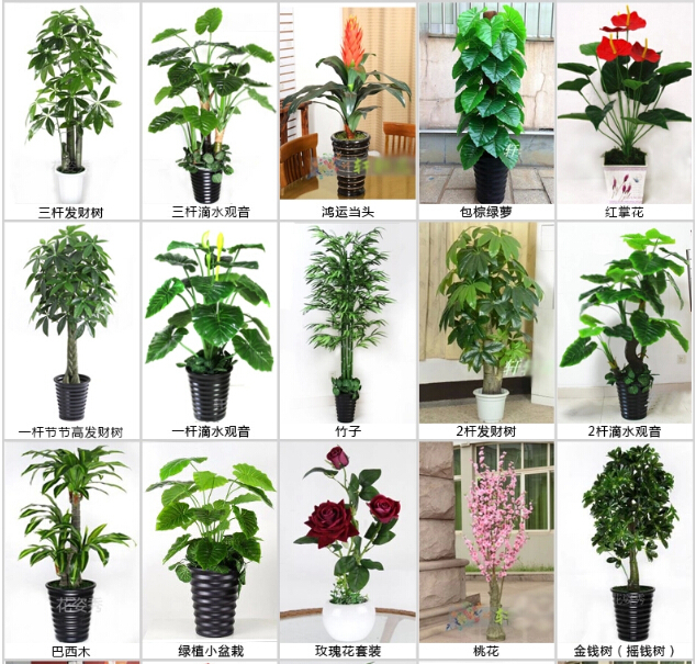 2015 China Guangzhou Factory Wholesale Indoor Artificial ...
