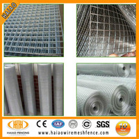 """China professional cheap1/2 inch plastic coated welded wire mesh/ wire mesh in dubai/3/4""""inch galvanized welded wire mesh"""