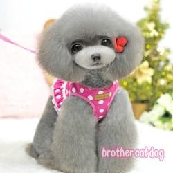 China pet supplies dog harness