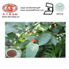 Palm Leaf Raspberry Fruit Extract Powder / Rubus idaeus Raspberry Ketone Extract Powder / Fructus Rubi P.E.