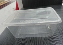 Micro plastic storage fresh bento box food containers food novelty containers