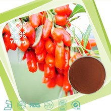 High Quality Goji Berry Plant Extract Powder/Chinese wolfberry Extract for Health food