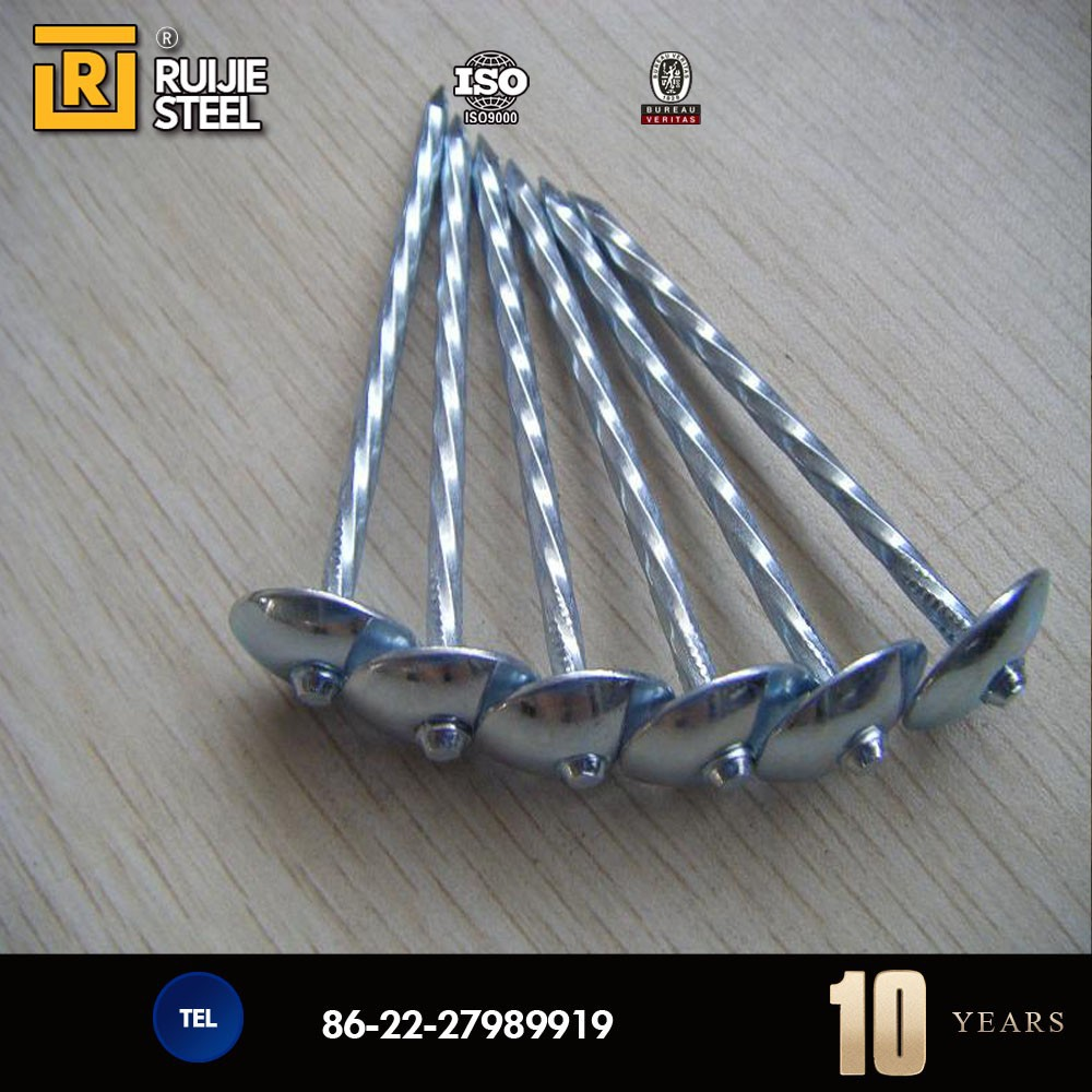 Galvanized umbrella head roofing nails with smooth twist for Roof nails dripping