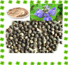 Factory Supply 100% Natural Chasteberry Extract