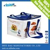Alibaba China Supplier Disposable Insulated Cooler Bag