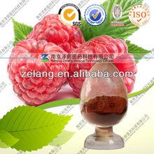 supply 10:1 Raspberry plant extract