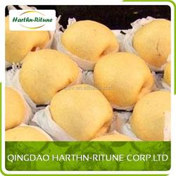 mytestNew Crop laiyang fresh pear