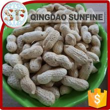 Skin extract roasted peanut in shell protein