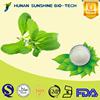 2015 Food Additives Flavoring Powder Organic Stevia Powder