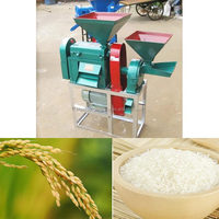 Hot Sale Home Rice Mill Plant with Best Price and Service