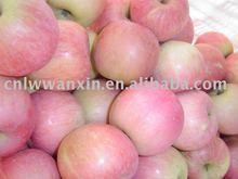 Fuji Apple yan tai new crop