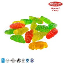 Parrot Animal Candy Wholesale