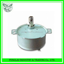 professional permanent magnet micro synchronous motor