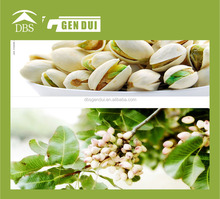 Pistachios coated cashew nuts coated cashew nuts