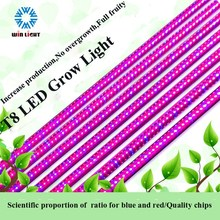2015 new arrival straight red & blue t8 led grow light