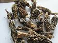 buen precio de negro chino hongos secos morel para la venta