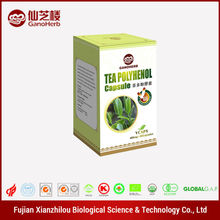 Beauty Care green tea extract capsule 95% polyphenols