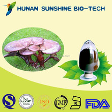 2015 hot sale sexual power product extract / Lucid Ganoderma p.e. polysaccharide powder