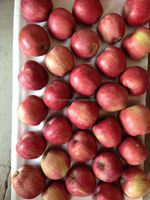 18kg red delicious apple 80/88/100/113/125/138/150